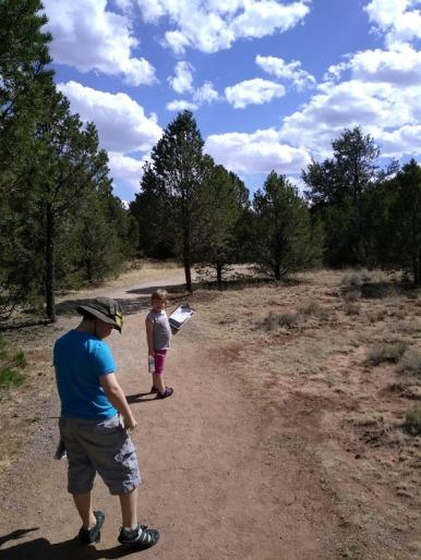 Pecos trees