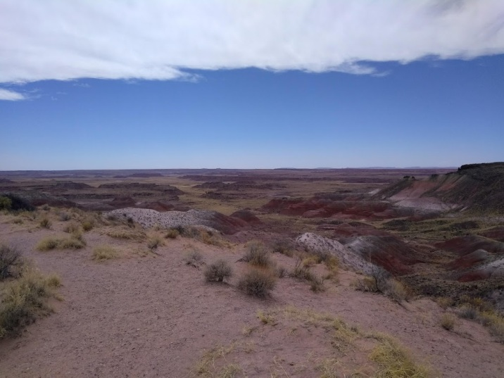 petrified forest painted desert clouds