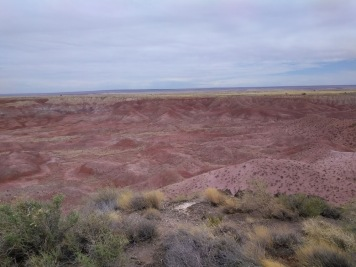 petrified forest painted desert